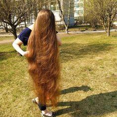 Long Red Hair, Medium Long Hair, Very Long Hair, Long Hair Cuts, Long Hair Styles, Beautiful Long Hair, Gorgeous Hair, Forced Haircut, College Hairstyles