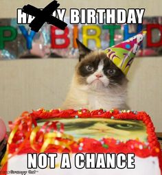 Have A Happy Birthday? Grumpy Cat Birthday meme on