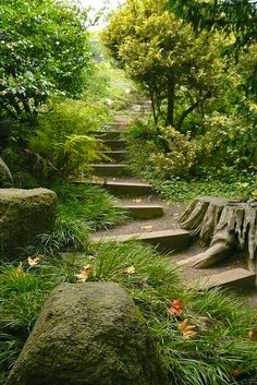 Garden steps--would love to do this up the woods behind the house. www.puffterrariums.com