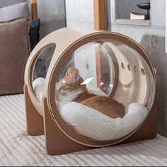 Adorable Cat House Pets Design Ideas is part of Cats - If you are a cat lover, then you are alway think to treat them with very well We all love to treat Crazy Cat Lady, Crazy Cats, Cat Room, Pet Furniture, Furniture Design, Cat Accessories, Modern Glass, Animal House, Pet Beds