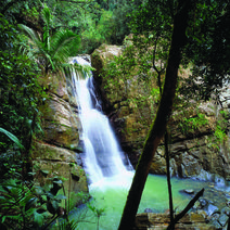 Top five San Juan excursions