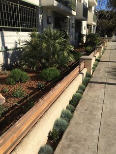 Garden Works Landscaping - Santa Monica, CA, United States. Landscaping drought…