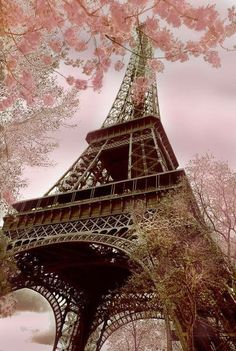 **Cherry Blossom Eiffel Tower #Pink And Brown