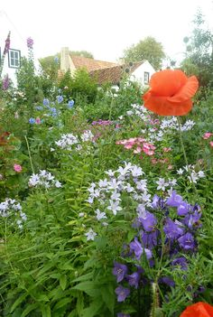 Netherlands Cottage Gardens, Hollum, Ameland | School House Garden blog