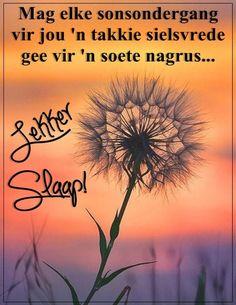 Goeie Nag, Afrikaans Quotes, Good Morning Good Night, Sleep Tight, Boss Wallpaper, Qoutes, Girl Boss, Sweet Dreams, Friends