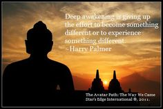 The Avatar Path: The Way We Came quote by author Harry Palmer