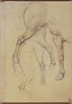 Leonardo da Vinci, 1452-1519, Italian, Horses' legs, c.1517-18.  Black chalk and pen and ink. Royal Collection Trust, Windsor.  High Renaissance.