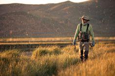 The Pursuit of the Drake Hatch - Silver Creek, Idaho. Copyright Ray J. Gadd.
