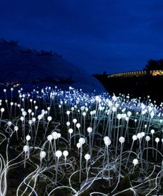 """Field of Light"" by Bruce Munro (fiber optic cables + glass spheres)"
