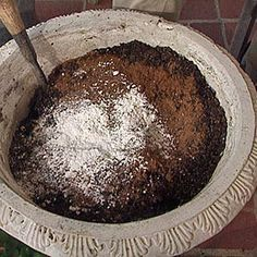 Make your own Organic Potting Soil---Three ingredients and ready to plant!
