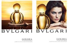 Bvlgari Goldea ~ new