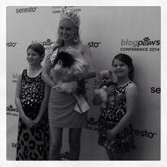 #blogpaws #redcarpet #pawjectrunway @BlogPaws Team @Shanna Olson @jackpomeranian