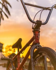 Bicycle Motocross setups from BMX and BMX Slopestyle courses and competitions. Cycling Quotes, Cycling Art, Bmx Gt, Vintage Bmx Bikes, Best Bmx, Bmx Street, Bike Pic, Tennis Accessories, Bike Photography