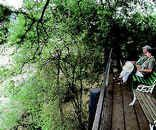Roodewal (Bush Lodge) - Kruger Park Kruger National Park, National Parks, Solar Panels, South Africa, Catering, Cottage, Lights, Places, Sun Panels