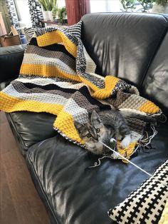 Soms een pain in the ass . Sun, Blanket, Blankets, Carpet, Quilt, Solar