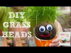 How to make Grass Heads. How to make a grass head. Spring Science for Preschool. Spring Crafts and STEAM ideas for Summer. Educational Spring Crafts Elementary S Toddler Play, Toddler Crafts, Toddler Activities, Crafts For Kids, Preschool Garden, Preschool Activities, Scout Activities, Origami Flowers, Tulip Origami