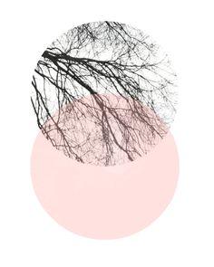 Logo Discover Scandinavian Art Abstract Art Print Art Print Circle Print Pink And Grey Decor Giclee print Wall Art Poster Wall Decor Skandinavische Kunst abstrakt Kunstdruck Art Print von exileprinted Posters Decor, Art Posters, Art Scandinave, Reproductions Murales, Graphisches Design, Door Design, Wall Design, Gris Rose, Art Abstrait