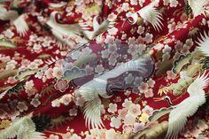 Stoff japanische Motive - Stoff japanische Kräne. - ein Designerstück von DIY-District bei DaWanda