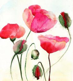 Stylized Poppy Flowers Illustration  Fine Art Print