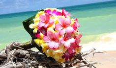 Plumerias are one of my favorite flowers and I'm looking forward to being surrounded by them.