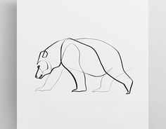"""Bear Series 