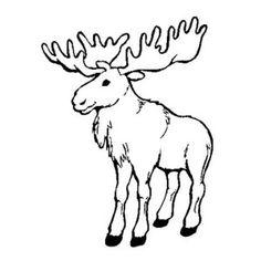 moosecoloringpage moose walking alone coloring page