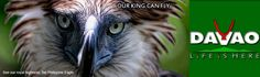 Welcome to the Official Web Site of the City Government of Davao. Philippine Eagle, City Government, Davao, Philippines, Monkey, To Go, Places To Visit, Happy, Animals