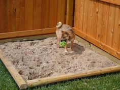 How to Build Sandboxes for Dogs DYI Dog Yard Sand Box - Great for the dog that loves to dig! Dog Friendly Backyard, Dog Backyard, Backyard Ideas, Backyard Fences, Backyard Projects, Digging Dogs, Stop Dogs From Digging, Dog Playground, Backyard Playground