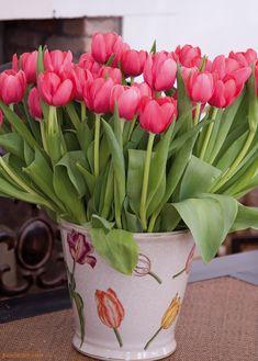 #Tulpen #Pracht by Brigitte von Boch #bevonboch #flower #design