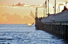the pier of Forte dei Marmi #italy #lucca #fortedeimarmi #versilia #beach #spiaggia #rivera #mare #sea  #vacanze #travel #viaggio #sunset #winter #pier