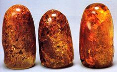 The Sankara Stones