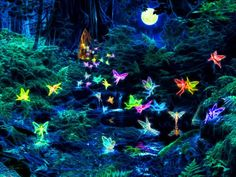 Visit the fairy realm at http://www.myangelcardreadings.com/fairies
