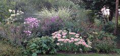 Sedum spectabile, Miscanthus sinensis variegatus, Anemone hybrida 'Königin Charlotte', Hydrangea Limelight, Veronicastrum, Spirea Anthony Waterer