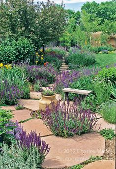 Landscape Architect and garden designer Catherine Clemens conceived and created this colorful and drought tolerant xeriscaped garden and home landscape scheme at her home in Santa Fe, New Mexico.