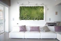 Quadro vegetale www.sundaritalia.com