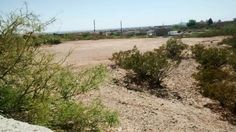 LARGE RESIDENTIAL LOT FOR SALE  Lot size 2.89 acres, residential zoned. Address ~ 4600 Real Del Sur, Located in Las Cruces NM. With in the city limits. City Utility hookups and water on property. Property located at end of quiet street in quiet subdivision! East side of property is a gorgeous view of the Organ mountains. Call 575-642-6688  #land #lotforsale #landforsale #property #realestate #realtor #realtors #discount #mountainview #moutain #country #countryliving #countrysetting #resident