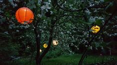 Japanese style lanterns with solar power :D Got these two years...
