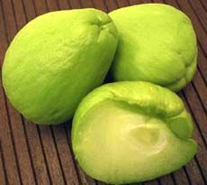 chayote was originally cultivated in Central America. The apple- green ...