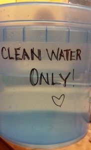 Clean Water Only
