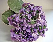 Your place to buy and sell all things handmade May Day Baskets, Favourite Festival, Millinery Supplies, May Days, Beltane, Violets, Shades Of Purple, Vintage Looks, Hydrangea