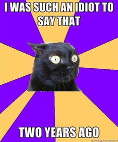Anxiety Cat, you just get me. This made me lol :)
