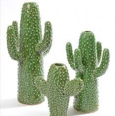 Vase cactus vert