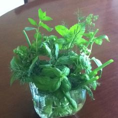 My Fresh herbs arranged in a vase. Grab as needed for the week.