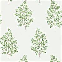 Sanderson Wallpaper - Angel Ferns