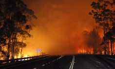 Elsewhere in Australia, a picture taken late on January 8 shows trees burning and smoke billowing from a fire along the Princes highway in the Shoalhaven area in New South Wales. A drop in temperatures helped firefighters battling blazes across Australia today.