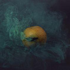 18-asian-pear_1527.jpg (650×650)