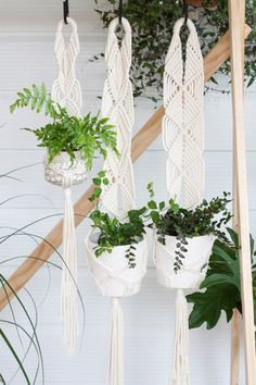 3 Cotton Macrame Plant Hangers // Indoor Planter // by KnottyBloom