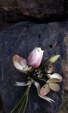 ❈ Fleurs Foncées ❈ dark art photography flowers & botanical prints - Saipua Floral