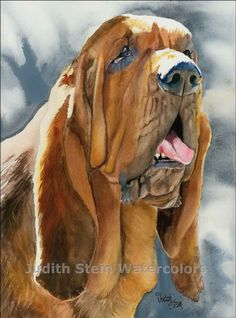 BLOODHOUND Dog by Judith Stein