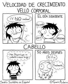 Anybody who's familiar with the comics of Sarah Andersen will know how perfectly they summarize the daily struggles of modern life, especially when it comes to Funny Shit, Funny Cute, The Funny, Funny Stuff, Sarah Anderson Comics, Sara Anderson, Memes Humor, Funny Memes, Funniest Memes